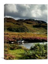 Loch Bad ah Sgalaig, Canvas Print