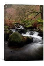Waterfall Gill, Yorkshire Dales, Canvas Print