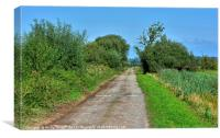 A Path Through The Somerset Levels, Canvas Print