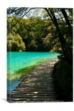 Beautiful wooden road beside a lake in Plitvice Na, Canvas Print