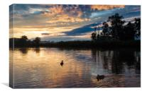 Silhouetted ducks at sunset, Canvas Print