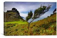 Valley Of The Rocks, Canvas Print