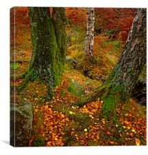 England: Autumn in the Lake District, Canvas Print
