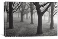 A figure in the mist, Canvas Print