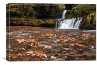 Waterfall in the Autumn, Canvas Print