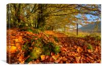 Autumn Colours in the Brecon Beacons, Canvas Print