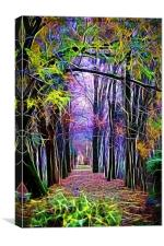 walk in the autumn forest with mist, Canvas Print
