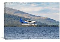 SEAPLANE LANDING, Canvas Print
