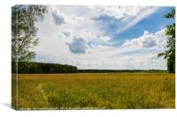 Cloudscape over the meadow, Canvas Print