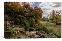 Polesden Lacey Surrey Autumn colour, Canvas Print