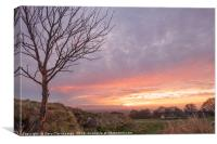 A sunset at Cleadon hill , Canvas Print