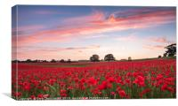 A Poppyland Sunset, Canvas Print