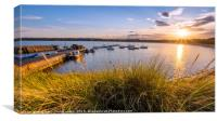 Golden Grasses at Beadnell, Canvas Print