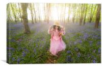 Small girl walks through bluebell woods in pink dress, Canvas Print