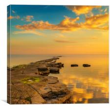 Golden sunlight illuminates a ledge at Kimmeridge, Canvas Print