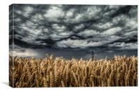 Wheat Field Thunder Storm, Canvas Print