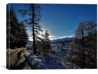 Winters day in glen Muick                     , Canvas Print