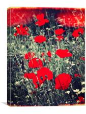 Red Meadow, Canvas Print