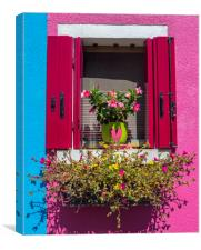 Window with Flowers in Burano, Canvas Print