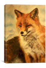 Pastel painting of a Fox, Canvas Print