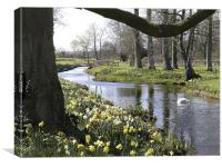 """Springtime"" River Wensum Norfolk, Canvas Print"