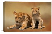Mother and cub lions, Canvas Print