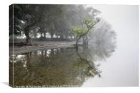 Aira Point Reflections, Canvas Print