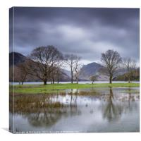 Buttermere Puddle, Canvas Print