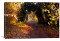 The Old Railway line, Canvas Print