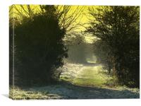 Old Railway Line (winter), Canvas Print