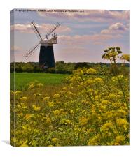 Tower Mill (Burnham Overy Staithe), Canvas Print