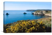 View from Berry Head, Canvas Print