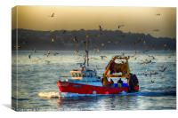 Trawler Heading for Port                  , Canvas Print