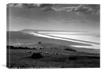 Chesil Beach, Dorset Monochrome , Canvas Print