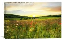 Evening on the South Downs, Canvas Print