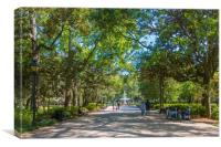 Walkway into Forsyth Park, Canvas Print