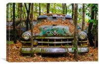 Old Caddy into Trees, Canvas Print
