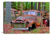 Old Red Jimmy, Canvas Print
