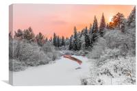 Evening sky over a frozen forest river, Canvas Print