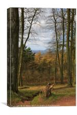 View from the Clent Hills, Canvas Print