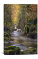 Fairy glen gorge., Canvas Print