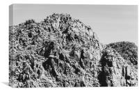 Landscape Joshua Tree 7340, Canvas Print