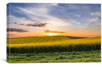 South Downs Sunset, Canvas Print