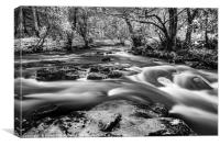 Wild River, Canvas Print