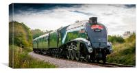 LNER Class A4 4488/60009 Union of South Africa 2, Canvas Print