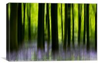 Impressions of a bluebell wood, Canvas Print