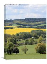 View across the Chilterns, Canvas Print