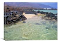Playa de Caleton Blanco, Lanzarote, Canvas Print