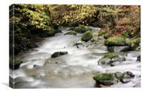 Stock Ghyll #1, Canvas Print