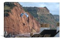 Paraglider over Sidmouth , Canvas Print